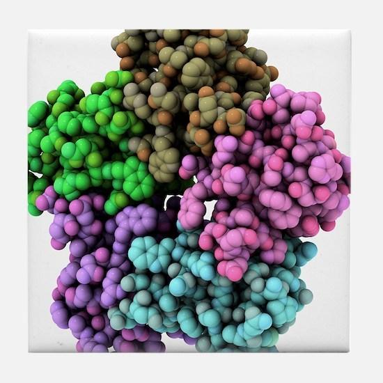 Shiga-like toxin I subunit molecule Tile Coaster