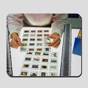 Photo editor choosing slide photographs Mousepad