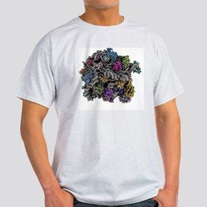 Ribosomal subunit, molecular model Light T-Shirt