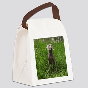 Portrait of Dog Canvas Lunch Bag
