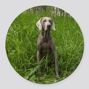 Portrait of Dog Round Car Magnet