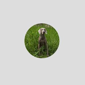 Portrait of Dog Mini Button