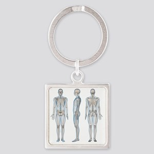 Male skeleton, computer artwork. Square Keychain
