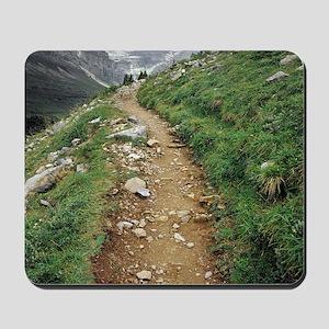 mountain path Mousepad