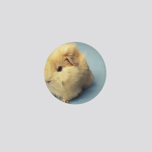 Cream colored Guinea pig Mini Button