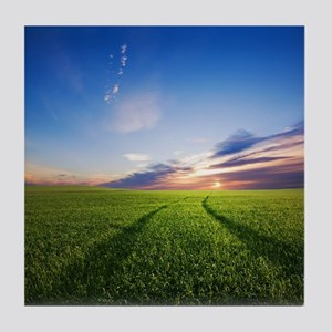 Green meadow under colourful sunset,  Tile Coaster