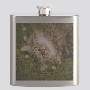 A brown long-haired tabby cat laying on the  Flask
