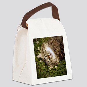 A brown long-haired tabby cat lay Canvas Lunch Bag