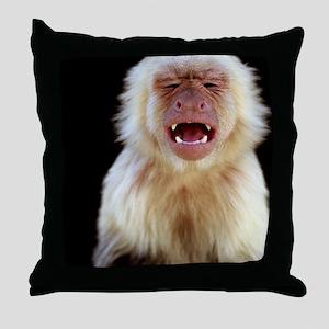 White-throated capuchin (Cebus capuci Throw Pillow