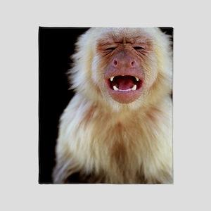 White-throated capuchin (Cebus capuc Throw Blanket