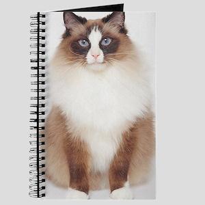 Big Furry Cat Journal