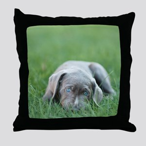 Blue eyed puppy resting on grass. Throw Pillow