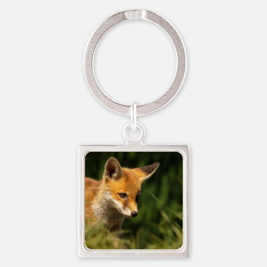 A young Red Fox cub peering throug Square Keychain