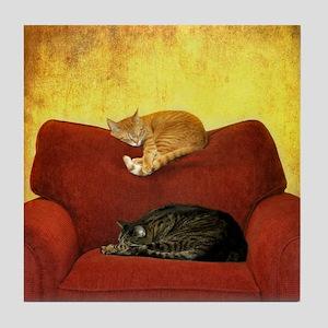 Cats sleeping on sofa. Tile Coaster
