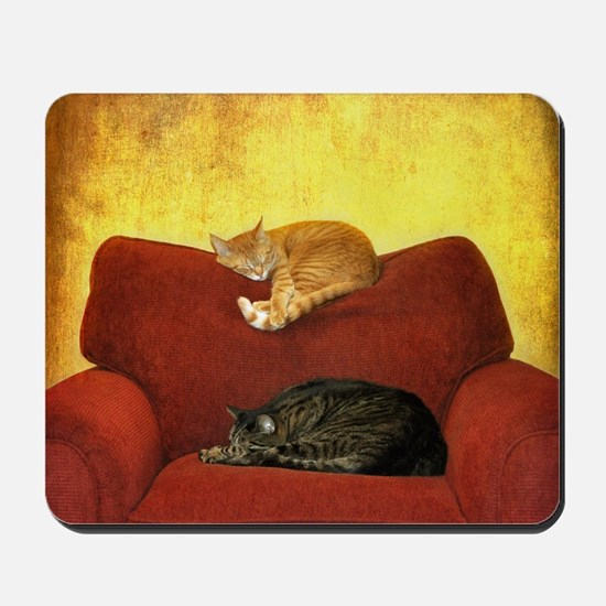 Cats sleeping on sofa. Mousepad