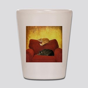 Cats sleeping on sofa. Shot Glass