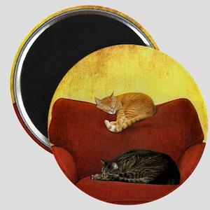 Cats sleeping on sofa. Magnet