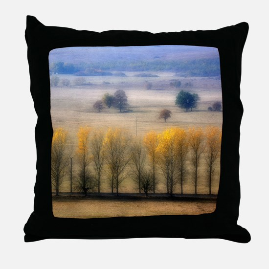 Autumn at Blumenthal. Throw Pillow