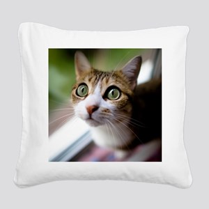 Cat green big eyes. Square Canvas Pillow