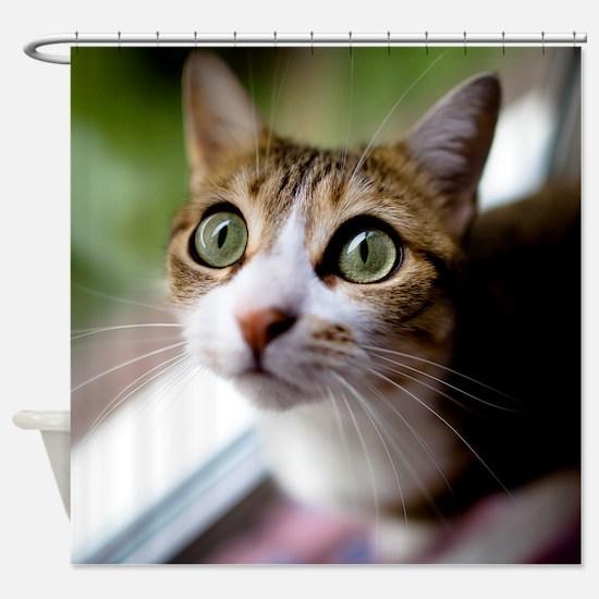 Cat green big eyes. Shower Curtain