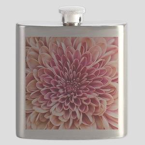 Close up of chrysanthemum. Flask