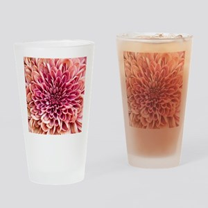 Close up of chrysanthemum. Drinking Glass