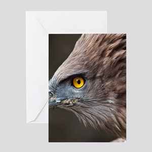 Close up of eagle. Greeting Card