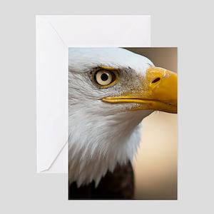Close portrait of Bald eagle. Greeting Card