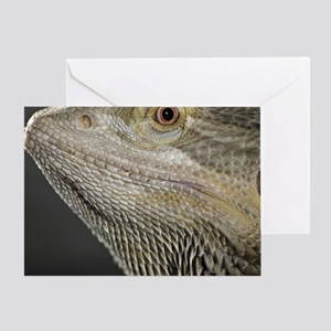Close up of Bearded dragon. Greeting Card