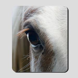 Close up of White horse eye Mousepad