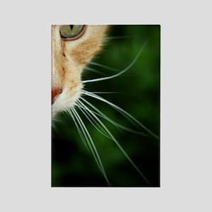 Ginger Cat Rectangle Magnet