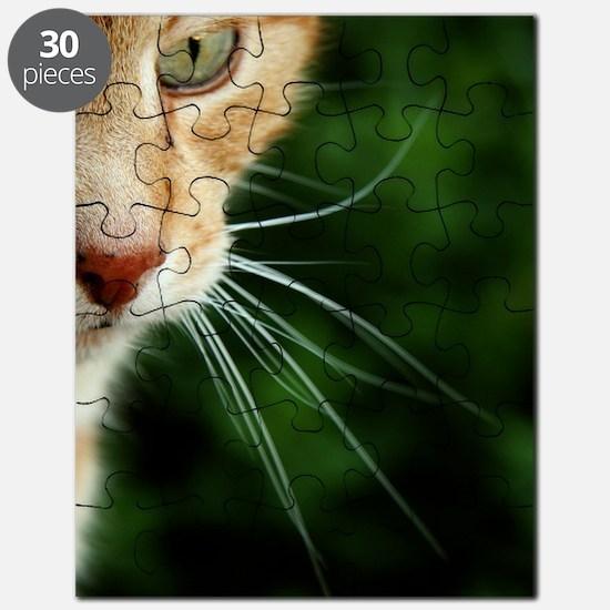 Ginger Cat Puzzle