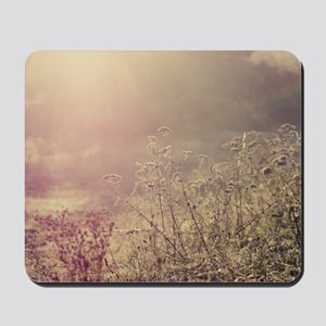 Grasses and mist. Mousepad