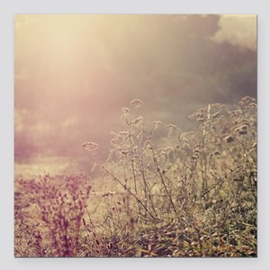 """Grasses and mist. Square Car Magnet 3"""" x 3"""""""
