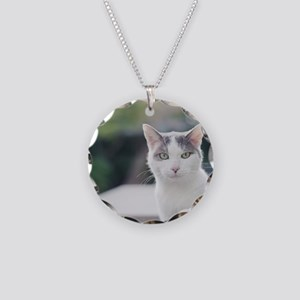 Grey and white cat looking t Necklace Circle Charm
