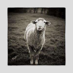 Ewe sheep stands in pasture and chews  Queen Duvet