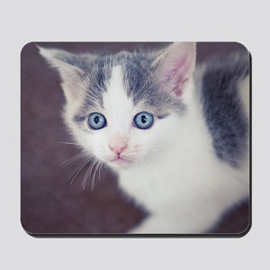 Kitten looking up with big blue eyes. Mousepad