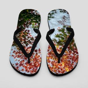 Kuhonbutsu in Autumn. Flip Flops