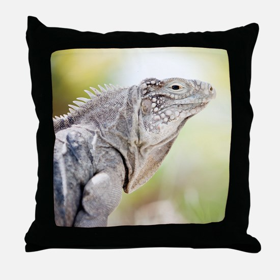 Large green Iguana basking in the sun Throw Pillow
