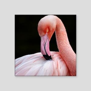 """Greater Flamingo Square Sticker 3"""" x 3"""""""