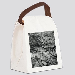 Little river plenty of stones, Br Canvas Lunch Bag