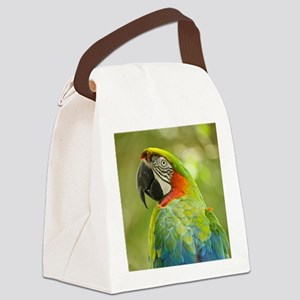 Green macaw parrot on green backg Canvas Lunch Bag