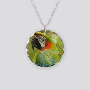 Green macaw parrot on green  Necklace Circle Charm