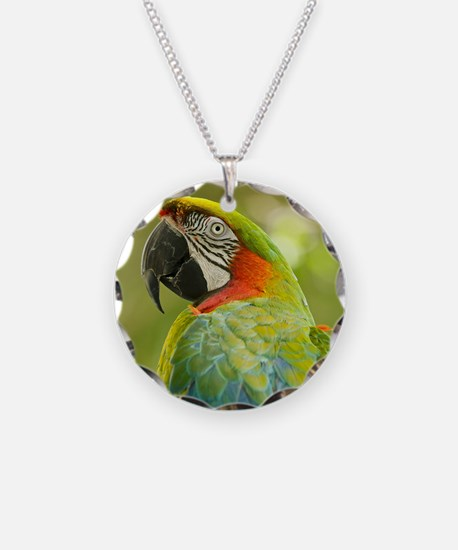 Green macaw parrot on green  Necklace