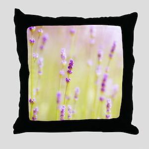 Lavender field. Throw Pillow