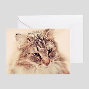 Norwegian Forest Cat enjoying the sn Greeting Card