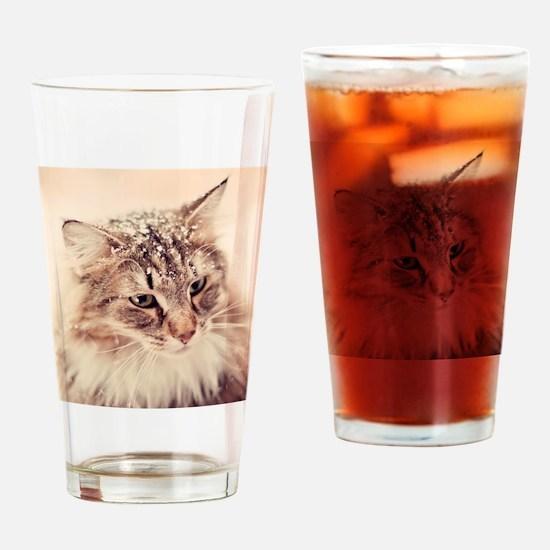 Norwegian Forest Cat enjoying the s Drinking Glass