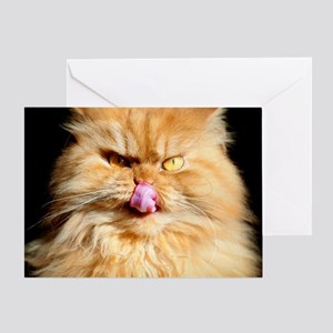 Persian cat looking at camera and li Greeting Card