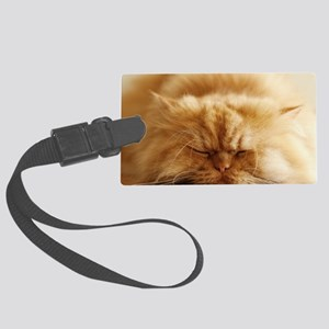 Persian cat sleeping on floor. Large Luggage Tag