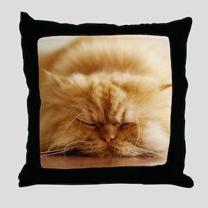 Persian cat sleeping on floor. Throw Pillow